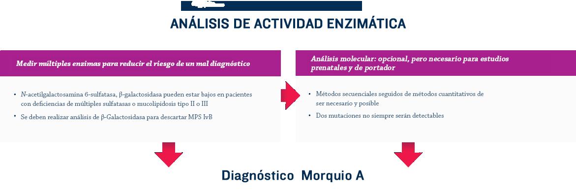 diagnostic-algorithm-1
